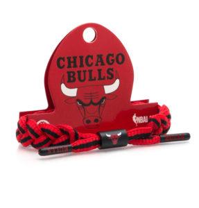 bulls-1